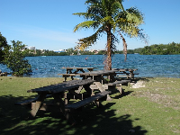 Picnic tables and coconut trees on the south end of the cove.