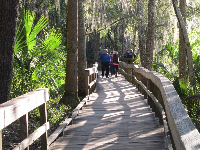 Many people walk the boardwalk on cold days to see the manatees!