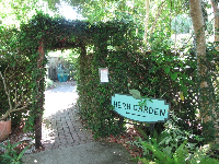 Delightful herb garden entrance.