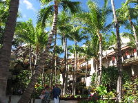 Palm trees galore at the shops at the Royal Hawaiian Hotel.