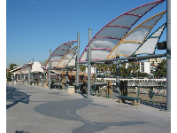 The Blue Whale designs in the cement on the pier at King Harbor.