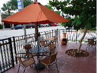 Outdoor seating under a tree, at La Crepe.