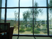 Big windows looking out on a desert garden.