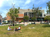 Students sitting on the grass between classes.