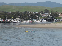Kayakers in the harbor, and cute green hills.
