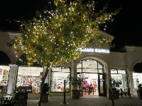 Christmastime at Calabasas Commons.