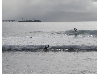 Surfer catching a wave, with the island in the background.
