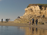The golden rock cliffs at San Gregorio Beach.