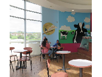 Inside the Ben & Jerry's Ice Cream- nice views!