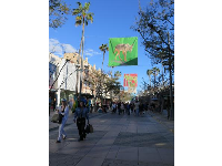 Flags on 3rd Street Promenade.