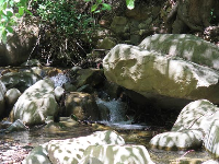 Rocks and stream.