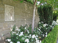Roses and engravings in the wall.