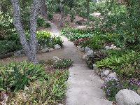 Pathways through the garden.