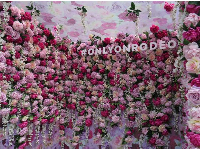 Pink roses in the selfie box on Rodeo Dr that says #ONLYONRODEO.