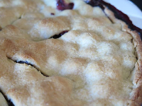 Little bumps where the blueberries are in the pie!