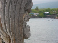 Profile of a Hawaiian god woodcarving- yikes!