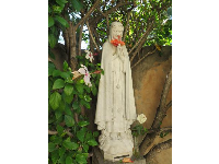 Statue of Mary, holding a red hibiscus.