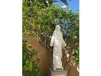 Statue of Jesus, with white hibiscus behind.