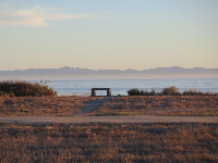 Bench for pondering life.