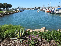 Landscaping by the harbor.