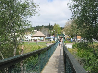 "Swinging bridge, looking back toward ""the village."""