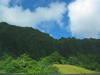 Views as you first enter the H3 Freeway from the Kailua side.