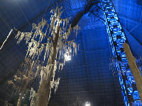 Spanish moss and elevator inside the pyramid.