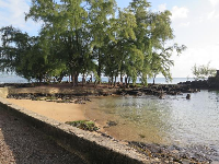 Sandy shore at Coconut Island.
