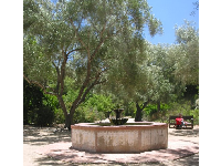 Spanish fountain in the garden amongst olive trees.