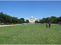 Lawn and US Capitol, from outside the National Gallery of Art.