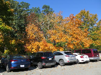 Even the parking lot looks nice in the fall.