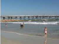 Kids play in the waves by the pier at Seal Beach.
