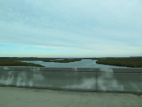 Salt marsh views while driving back from Isle of Palms.