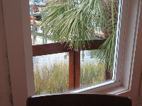 I loved looking out this window at the marsh grasses.