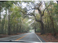 Driving on Ashley River Road.