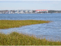 Salt marshes, as seen from Waterfront Park.