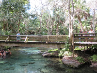 Bridge over the head spring area.