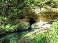 Cave at the head spring.