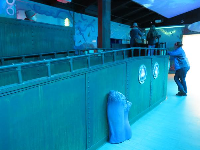 Kids can stand on the ship and control the fish projection with their hands in the air.