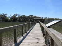 Boardwalk and gazebo over the salt marsh.