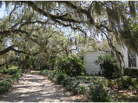 Spanish moss near the entrance.