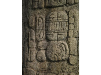 Carvings in the Lost Temple.