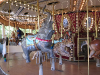 Animals to ride on the carousel.