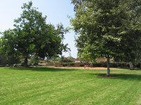 The nice lawn and shade trees. The flat lawn is great for playing ball!
