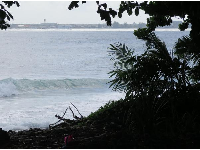 Wave on the right side of the beach, with Hilo town behind.
