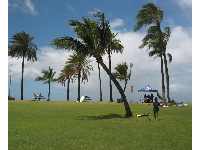 The huge lawn that leads up to the beach- sometimes there are surf contest tents set up here.
