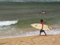 A young surfer checks out the scene.