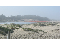 Misty lagoon, as seen from the end of Addie Street.
