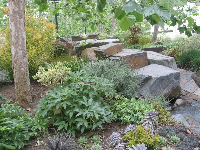 The gorgeous plants and rocks in the peaceful Sound Garden.