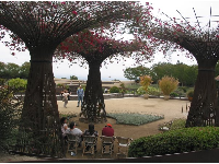 The bougainvillea arbors between the Sound Garden and the Central Garden.